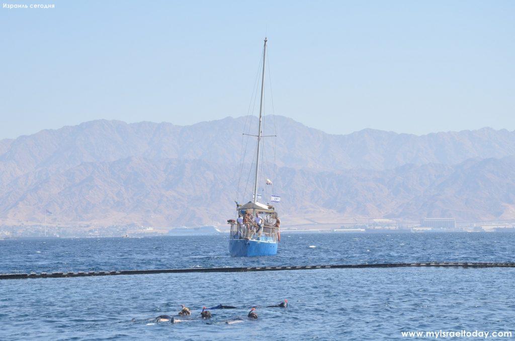 кораблик в Дельфиньем Рифе