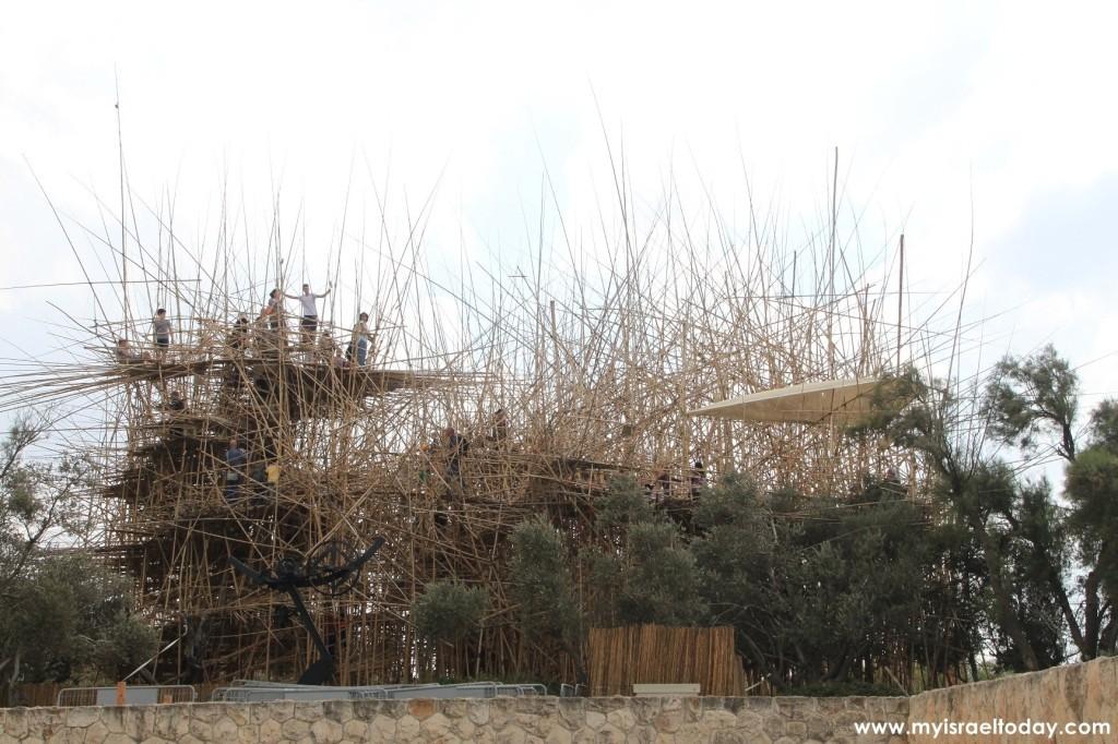 Большое гнездо из бамбука