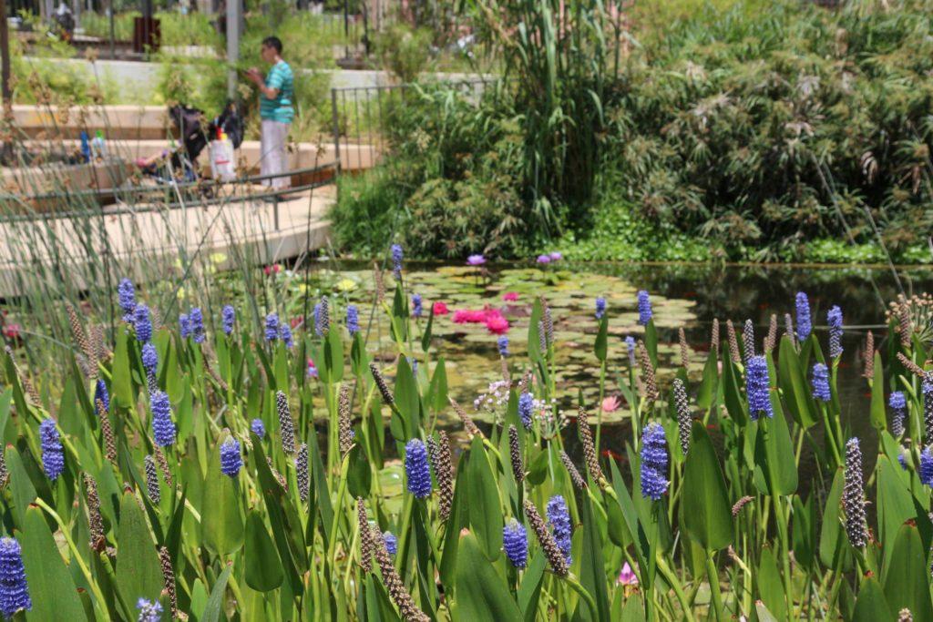 парк Кирьят Сефер Тель-Авив