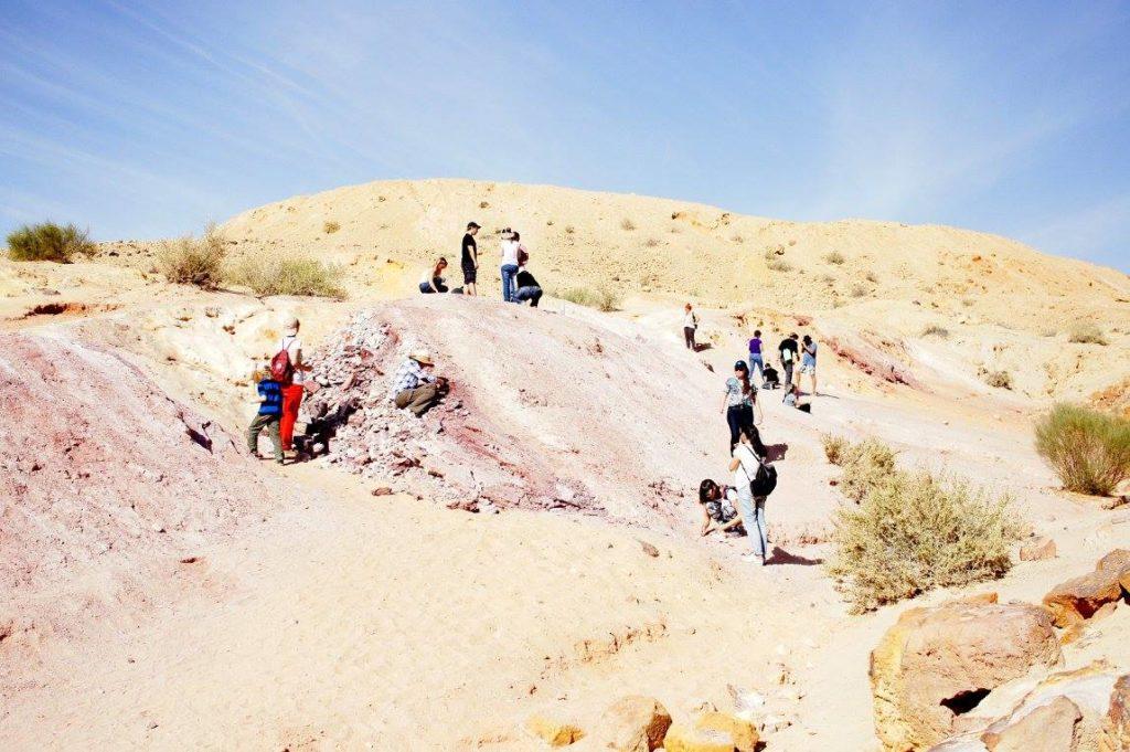 Цветные пески Негева