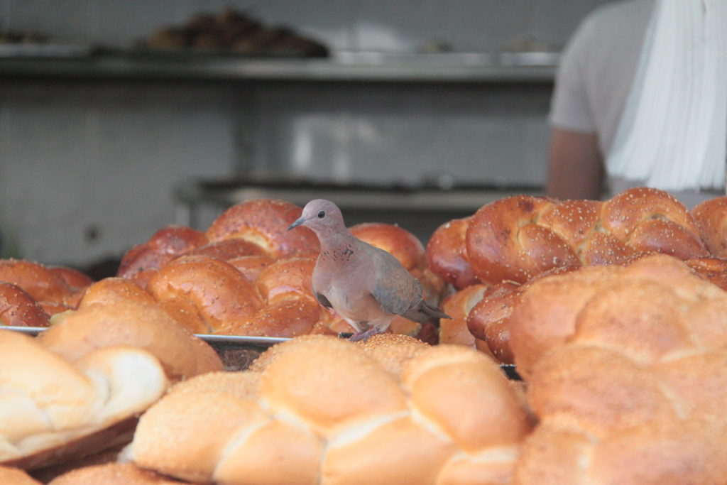 Еда в Израиле