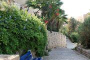 Индивидуальная экскурсия по древнему Яффо