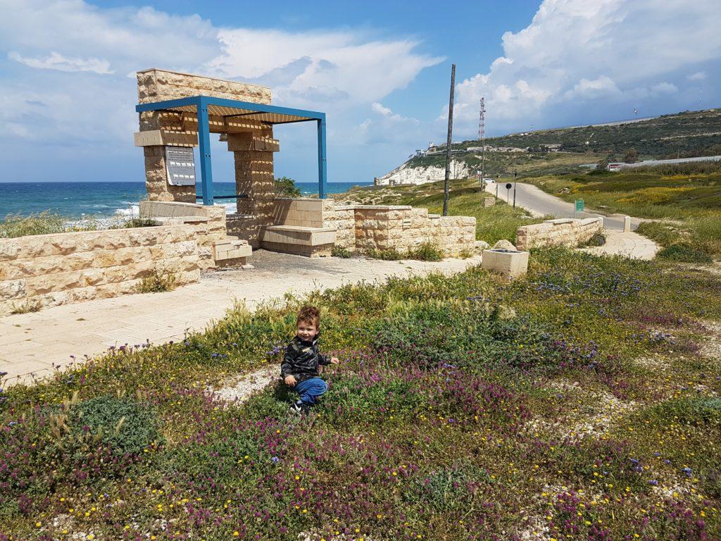 Тур в Израиль, день пятый